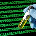 dna-paternity-testing-rights-nyc