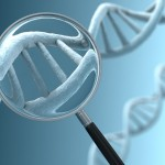 how-long-wait-for-dna-test-results-immigration